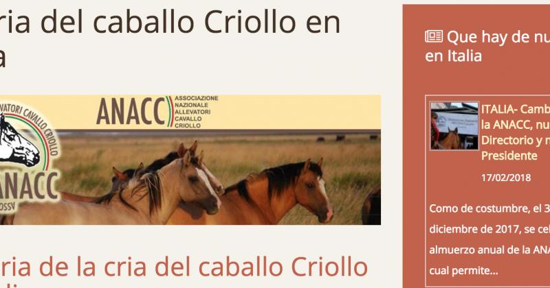 ANACC nelle News Criollo Horse
