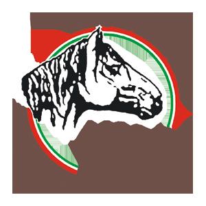 ANACC-MARCHIO_INDEX