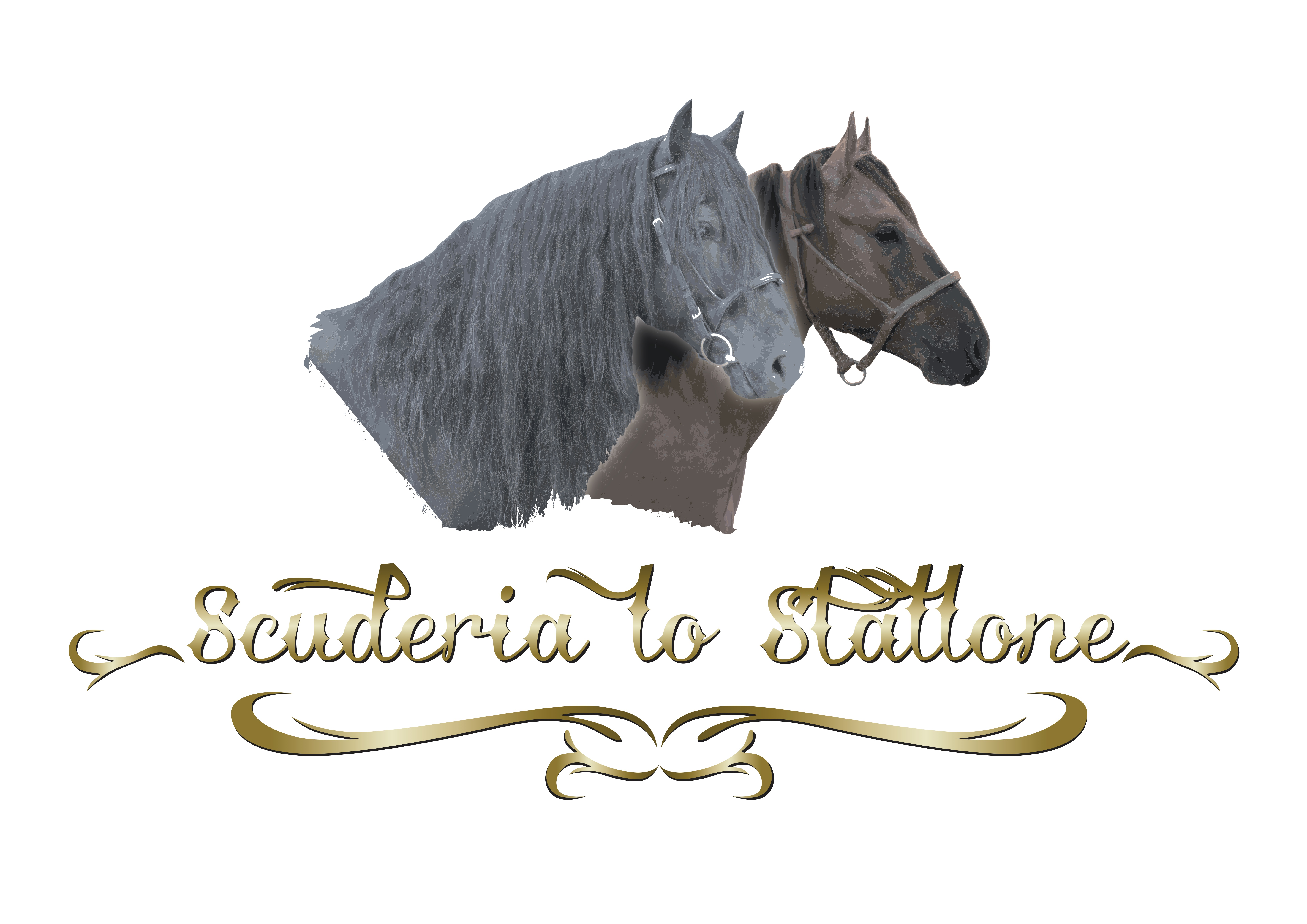Logo_foto-oro_ombra_payof_bianco_RZ